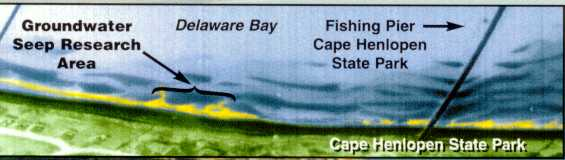 Groundwater seeps into Delaware Bay along Cape Henlopen.